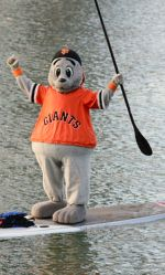 Lou Seal Stand Up Paddleboarding