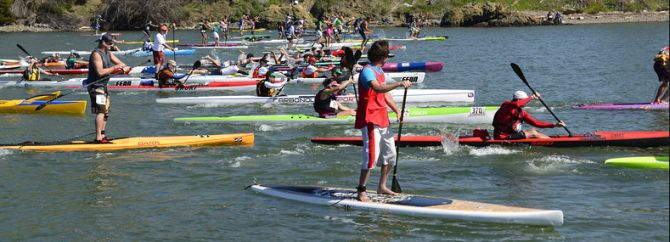 Paddleboard Racing on San Francisco Bay