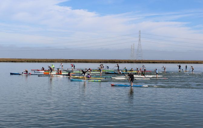 Stand Up Paddleboard Racing in Redwood City