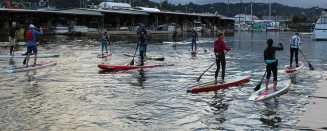 Group paddles