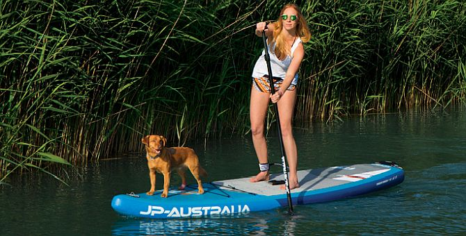 Dogs love inflatable paddleboards