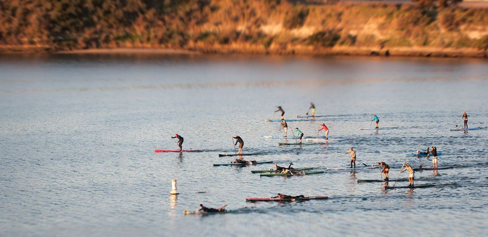 Group Paddleboard Sessions in San Rafael